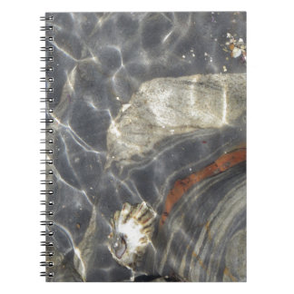 Marine Life at Point Lobos Notebooks