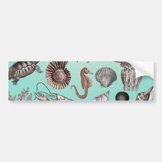 Marine Life Bumper Sticker