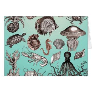 Marine Life Card