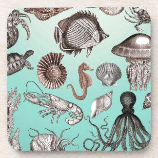 Marine Life Coaster