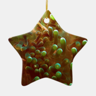 Marine life in the blue ocean water ceramic star ornament