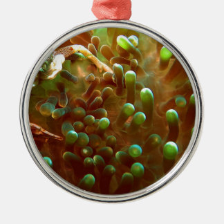 Marine life in the blue ocean water Silver-Colored round ornament