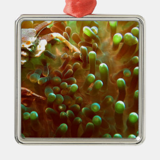 Marine life in the blue ocean water Silver-Colored square ornament