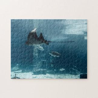 Marine Life Jigsaw Puzzle