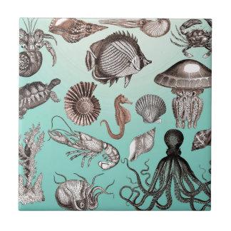 Marine Life Tile