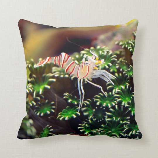 Marine Shrimp and Lebeus balssi Throw Pillow