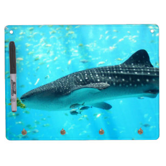 Marine Water Chic Stylish Cool Blue Whale Shark Dry Erase Boards