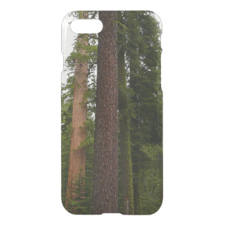 Mariposa Grove in Yosemite National Park iPhone 8/7 Case