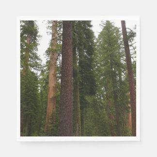 Mariposa Grove in Yosemite National Park Paper Napkins