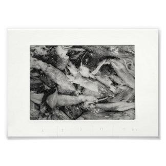 Market Glisten Photo Print