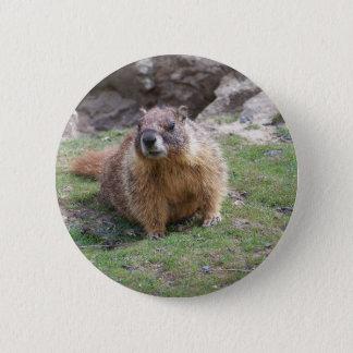 Marmot 2 Inch Round Button