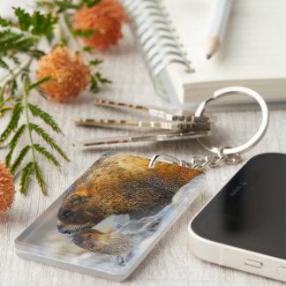 marmot and baby Single-Sided rectangular acrylic keychain