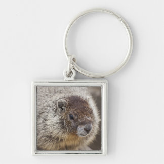 Marmot at Palouse Falls State Park Silver-Colored Square Keychain