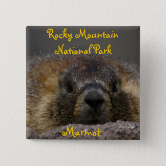 Marmot at Rocky Mountian National Park 2 Inch Square Button