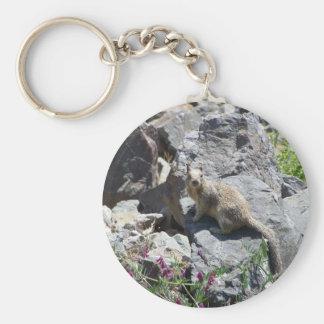 marmot basic round button keychain