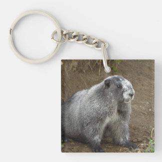 Marmot Double-Sided Square Acrylic Keychain