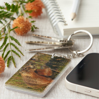 marmot eating grass Double-Sided rectangular acrylic keychain