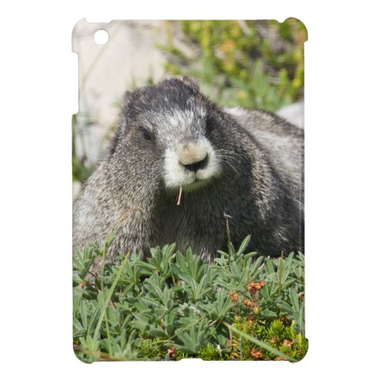 Marmot iPad Mini Case