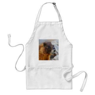 marmotte tablier
