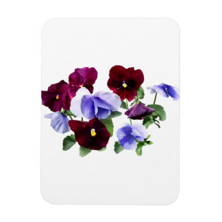 Maroon And Purple Pansies Rectangular Photo Magnet