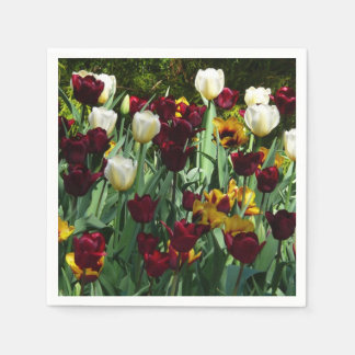 Maroon and Yellow Tulips Colorful Floral Napkin