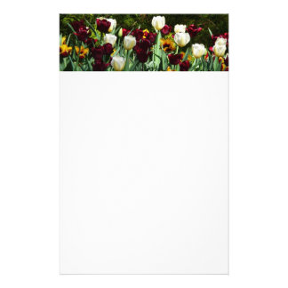 Maroon and Yellow Tulips Colorful Flowers Stationery Design