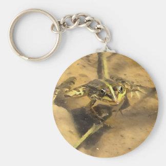 Marsh Frog Basic Round Button Keychain