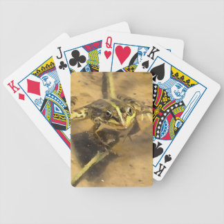 Marsh Frog Bicycle Playing Cards