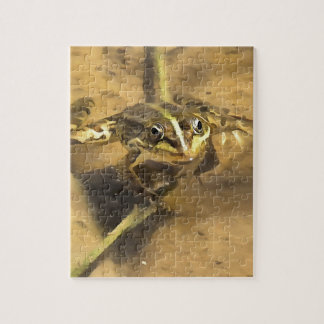 Marsh Frog Jigsaw Puzzle