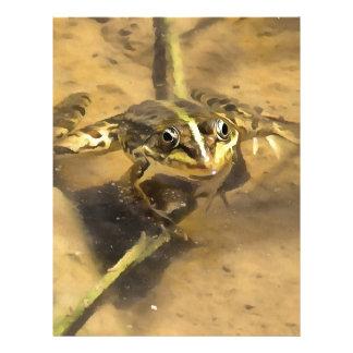Marsh Frog Letterhead