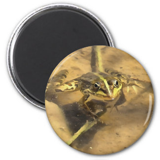 Marsh Frog Magnet