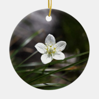Marsh grass of Parnassus (Parnassia palustris) Round Ceramic Ornament