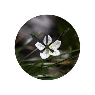 Marsh grass of Parnassus (Parnassia palustris) Round Clock