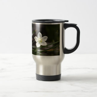 Marsh grass of Parnassus (Parnassia palustris) Travel Mug