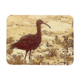 Marsh Ibis Flexible Magnet