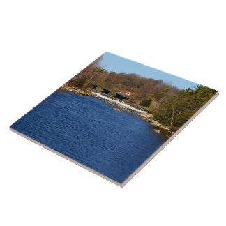 Marsh Stream Reservoir Tile