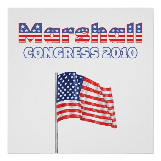 Marshall Patriotic American Flag 2010 Elections Print