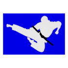 martial arts silhouettes poster