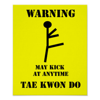 Martial Arts Taekwondo Warning Poster