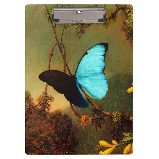 Martin Johnson Heade Blue Morpho Butterfly Clipboards