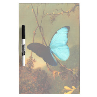 Martin Johnson Heade Blue Morpho Butterfly Dry-Erase Whiteboard
