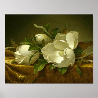 Martin Johnson Heade - Magnolias on Gold Velvet Poster
