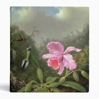 Martin Johnson Heade Orchid And Hummingbirds Binders