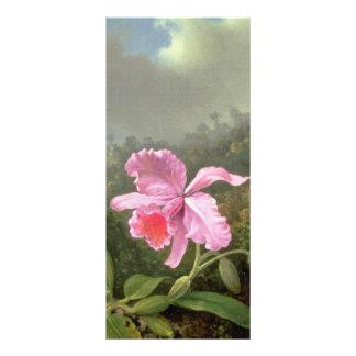 Martin Johnson Heade Orchid And Hummingbirds Full Colour Rack Card