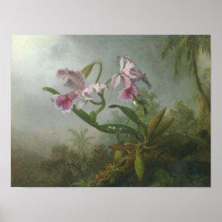 Martin Johnson Heade_Orchid-hummingbird Poster