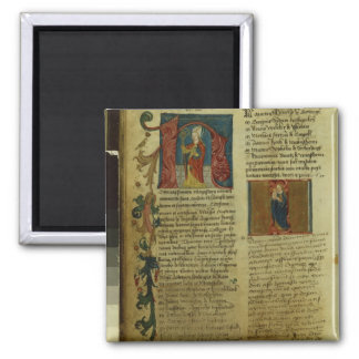 Martin Luther's Enrolment Magnets