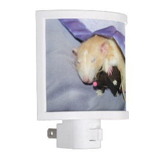 Marty Sleeping with Rat Teddy Night Light