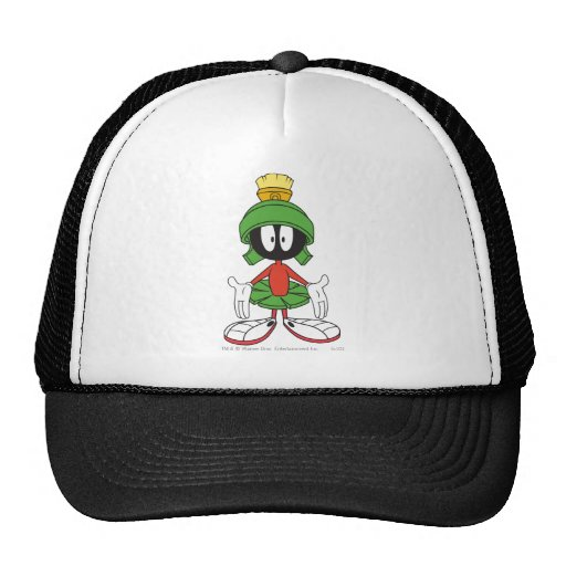 Marvin the Martian Confused Hats