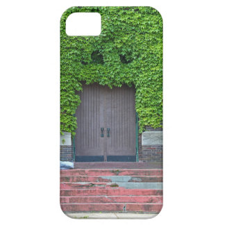 Mary Manse Doors- horizontal Case For The iPhone 5