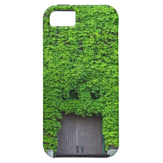 Mary Manse Doors- vertical iPhone 5 Cover